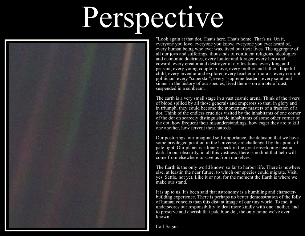 Carl Sagan Pale Blue Dot Book